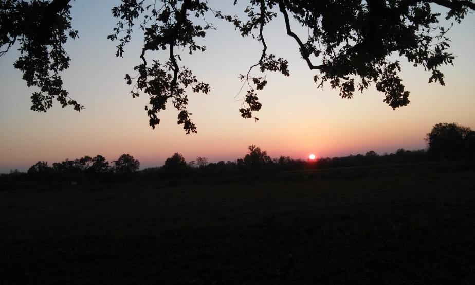 Sara al tramonto (DeGiovanni)