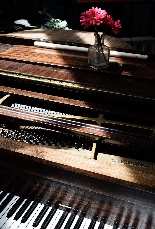L'ultima sonata (Rava)